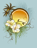 Hibiskusbakgrund Royaltyfri Bild