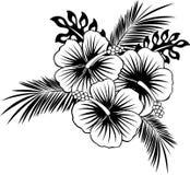 Hibiskusblommor med tropiska sidor royaltyfri bild
