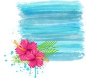 Hibiskusen blommar på bakgrund för grungevattenfärgefterföljd Fotografering för Bildbyråer