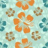 Hibiskusen mönstrar Royaltyfria Bilder