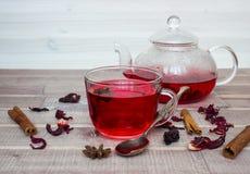 Hibiskuste i den glass tekannan, lock med te, kryddor och torkar blomman Arkivfoto