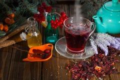 Hibiskuste i en glass kopp på en träbakgrund Royaltyfri Foto