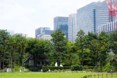 Hibiya park in Tokyo, Japan. Tokyo, Japan - 22 July 2017: view of Hibiya Park with skyscrapers in the background stock photos
