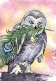 Hibou avec la plume Photos libres de droits