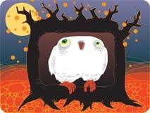 Hibou dans une cavité d'arbre Photo stock