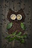 Hibou de café Photos libres de droits