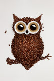 Hibou de café. Photos stock