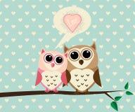 Hibou de couples avec amour Photo stock