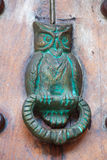 Hibou de heurtoir de porte formé Photo libre de droits