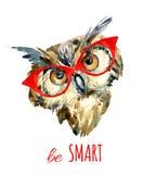 Hibou de hippie d'aquarelle en verres illustration stock