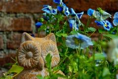 Hibou de jardin Photos libres de droits