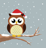 Hibou de Noël Images libres de droits