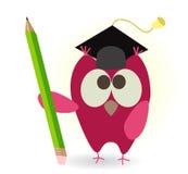 Hibou et crayon Image stock