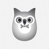 Hibou gris Images stock