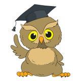 Hibou intelligent Hibou d'obtention du diplôme de personnage de dessin animé Photos libres de droits