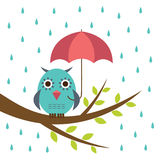Hibou mignon avec le parapluie Image libre de droits