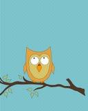 Hibou orange sur le branchement d'arbre illustration stock