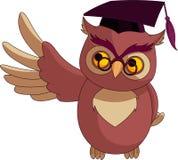 Hibou sage de dessin animé avec le capuchon de graduation Image stock