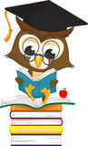 Hibou sage lisant un livre tout en se reposant sur une pile des livres illustration de vecteur