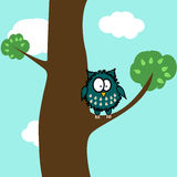 Hibou sur l'arbre Photographie stock libre de droits
