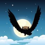 Hibou sur le ciel nocturne avec la lune Images stock