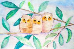 Hiboux étés perché sur la branche - peinture originale d'aquarelle illustration libre de droits