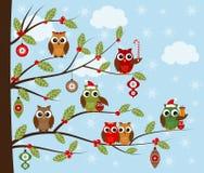 Hiboux de Noël Photo libre de droits