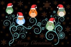 Hiboux de Noël avec le chapeau de Santa sur l'arbre sur le noir Image libre de droits
