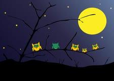 Hiboux la nuit Images libres de droits