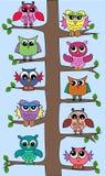 Hiboux mignons dans un arbre Photo stock