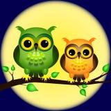 Hiboux sur le branchement avec la pleine lune Photographie stock libre de droits
