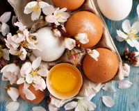 Сhicken eggs and almond flowers. On  a blue wooden background Royalty Free Stock Image