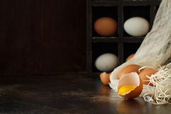 Сhicken eggs  on a dark background. Close up Stock Photography