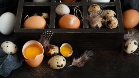 Сhicken and quail eggs in a box. On a dark background Stock Image