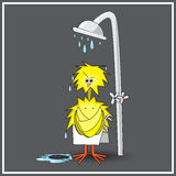 Сhicken in the shower. Funny illustration of chick in the shower (EPS 10 Royalty Free Stock Images