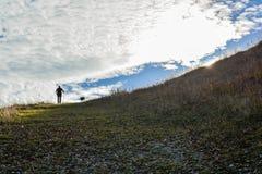 Hicker και σκυλί που περπατούν στην κορυφή του βουνού στοκ εικόνες