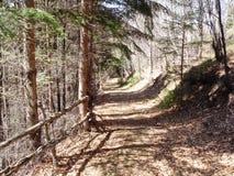 Hicking. In the Apuseni Mountains in Transylvania Royalty Free Stock Photo