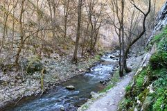 Hicking. An awsome hicking trail near Cluj-Napoca Royalty Free Stock Photography