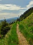 Hicking Path Stock Photos