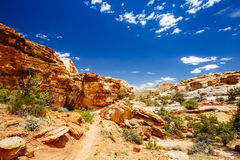 The Hickman Bridge Trail, Capital Reef National Park, Utah, USA. The trail to Hickman Bridge is Capitol Reef National Parks most popular hike and features Royalty Free Stock Images