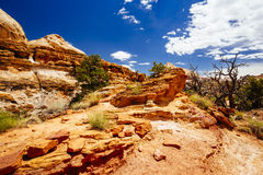 The Hickman Bridge Trail, Capital Reef National Park, Utah, USA. The trail to Hickman Bridge is Capitol Reef National Parks most popular hike and features Royalty Free Stock Photography