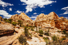 The Hickman Bridge Trail, Capital Reef National Park, Utah, USA. The trail to Hickman Bridge is Capitol Reef National Parks most popular hike and features Stock Photo