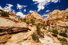 The Hickman Bridge Trail, Capital Reef National Park, Utah, USA. The trail to Hickman Bridge is Capitol Reef National Parks most popular hike and features Stock Images