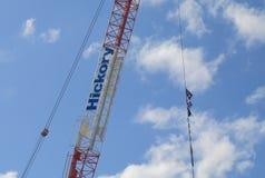 Hickory Australia construction company Stock Image