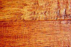 Hickory Hardwood royalty free stock photos