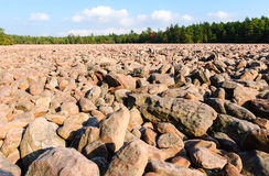 Hickorykörningsdelstatspark Arkivfoton