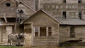 hicks mill Obraz Royalty Free