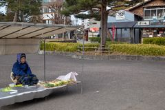 Local market name Jinya-Mae in Takayama, Japan. Hida Takayama, Gifu, Japan - December 2018 : Seller woman sitting sell local farm products such as vegetables royalty free stock image