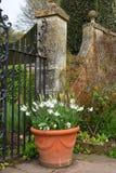 Hidcote-Landsitz-Garten, Campden abbrechend, Gloucestershire, England Stockfotos