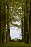 Hidcote-Landsitz-Garten, Campden abbrechend, Gloucestershire, England Stockfotografie